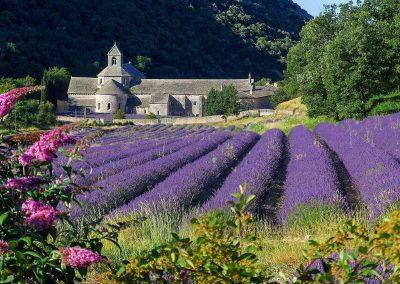 L'Abbaye de Sénanquein its lavender case!